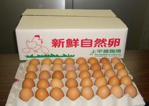 けっこうええ卵 50個入り